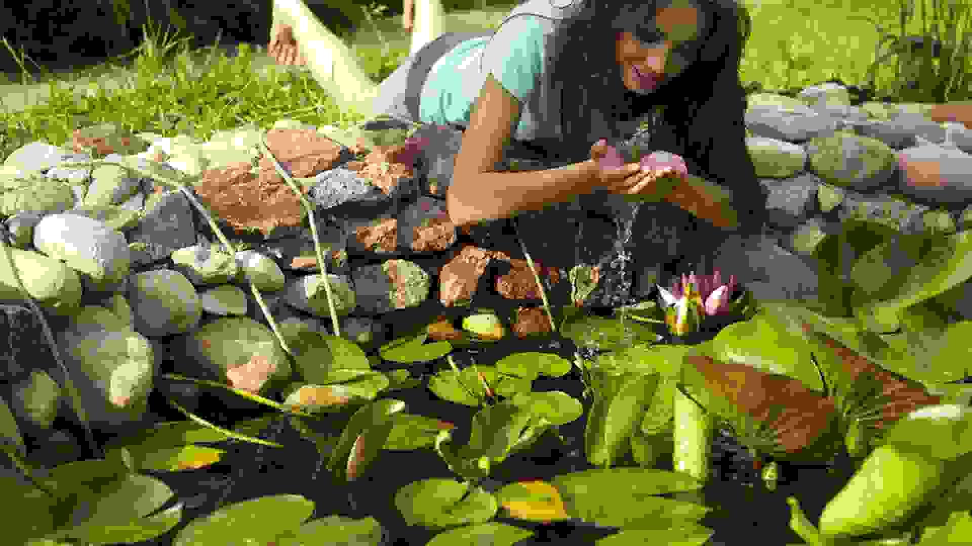 Was gibt es Schöneres als einen plätschernden Teich im eigenen Garten?