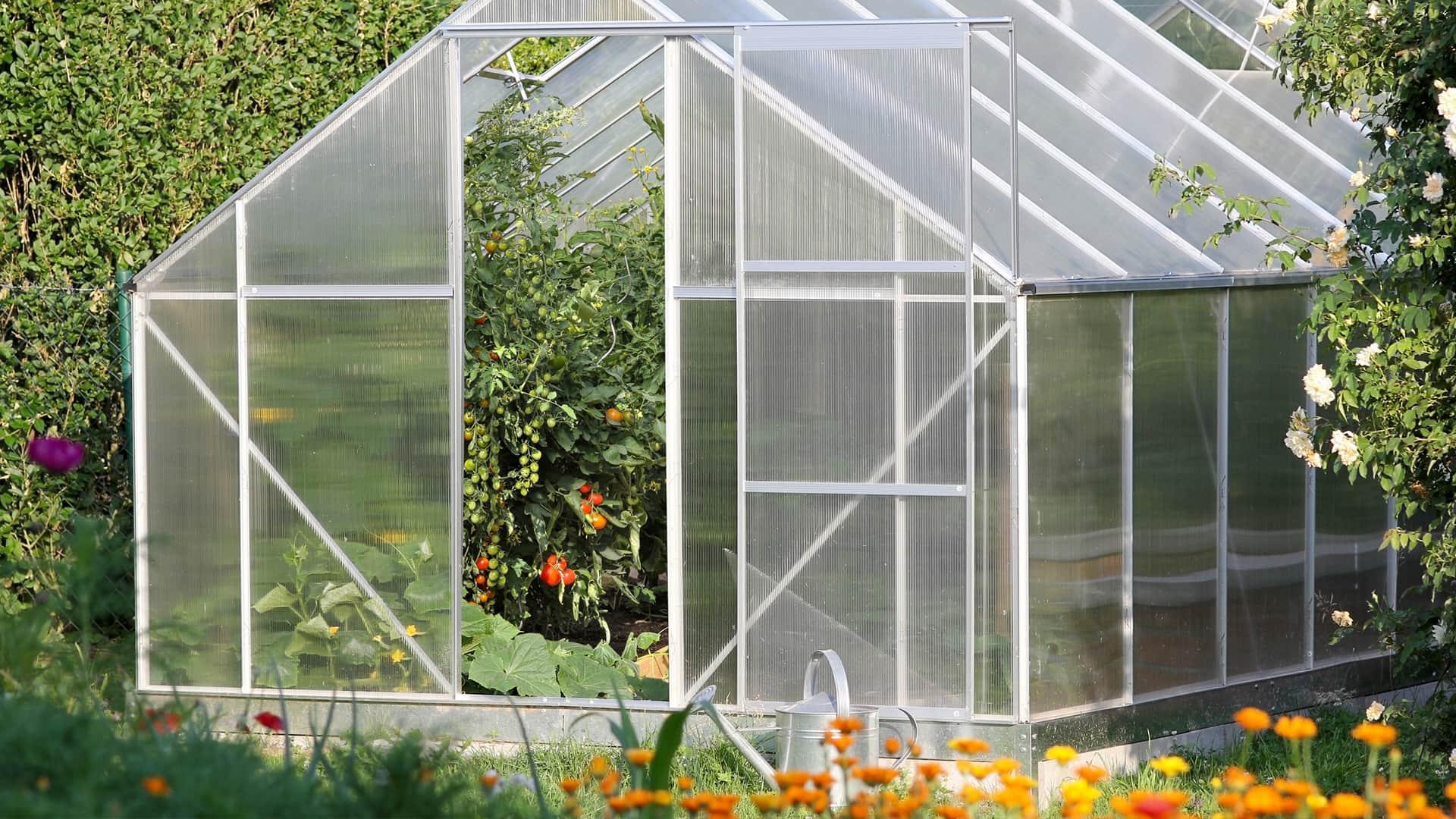 So wird professionelles Gärtnern kinderleicht: Mit einem kleinen Gewächshaus!