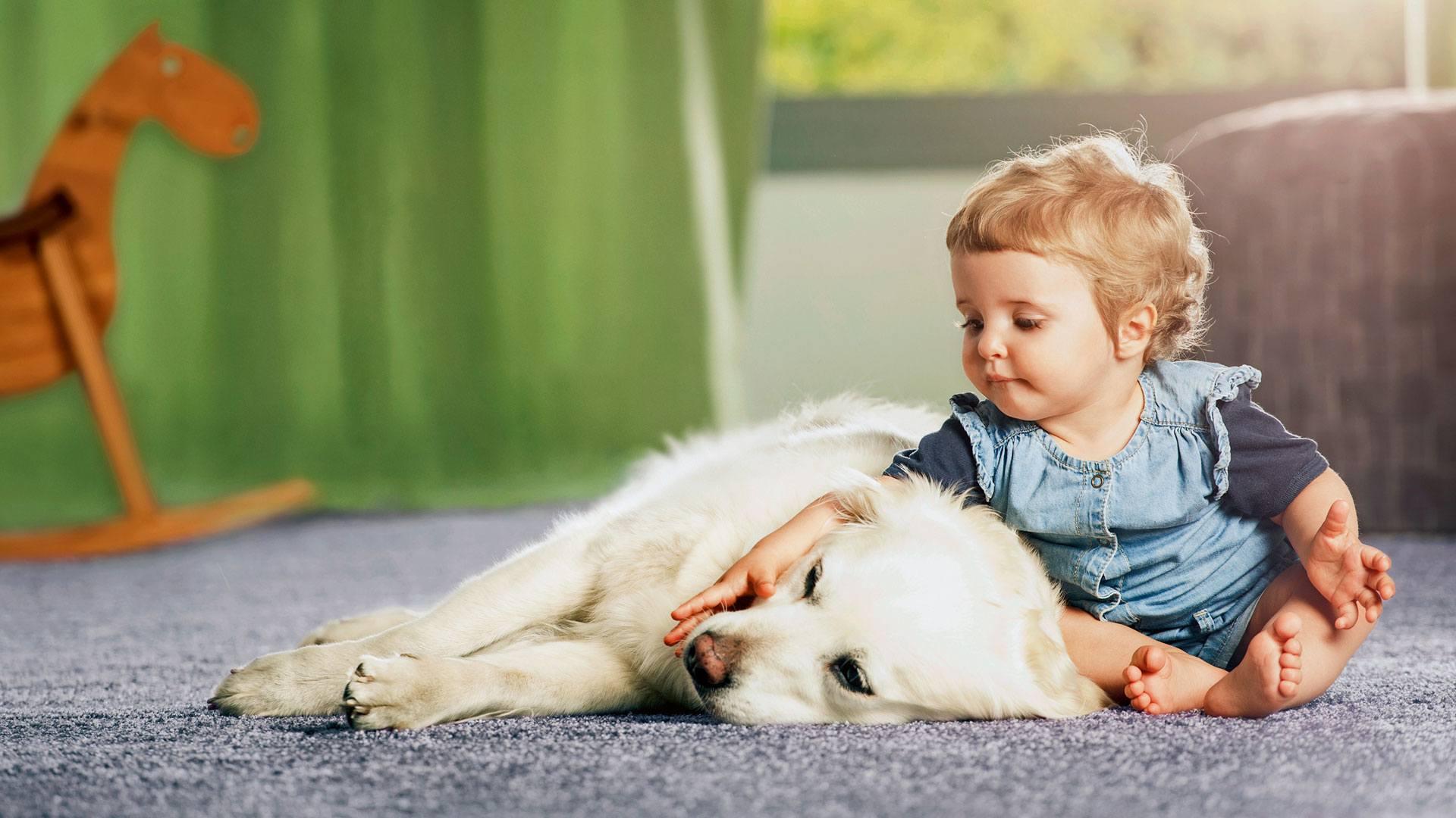 Kind und Hund auf Teppich aus Schurwolle